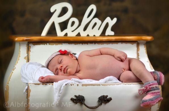 Albfotografie Martin Fehrle, New Born, Babyfotografie, Familienfotografie
